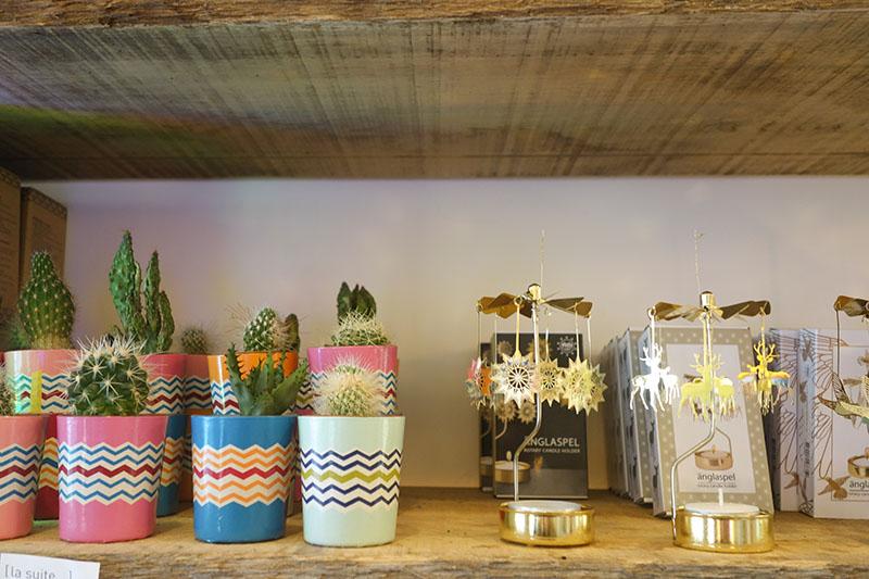 Objets déco cactus et carroussel boutique [la suite…] à Blois